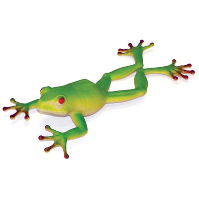 View ANIMAL KINGDOM FROG 9 INCH IN DISPLAY